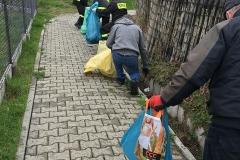 2019-04-14 - Wiosenne sprzątanie Bukowa.