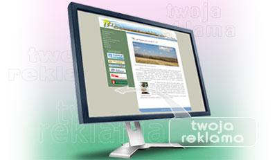 2008-04-21-twoja-reklama