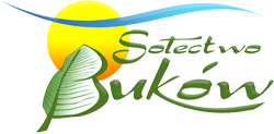 bokow_logo_250