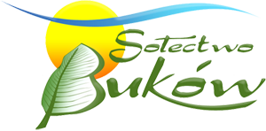 bokow_logo_300